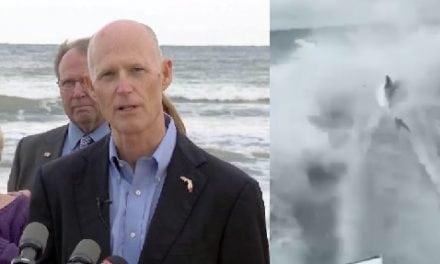 Gov. Rick Scott wants regulations checked after 'disturbing' shark-dragging