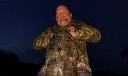 Man Catches New Minnesota Flathead Catfish Record