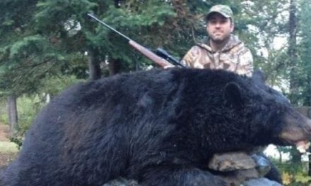 Monster 760-Pound Ontario Black Bear Shot, Man Convicted Three Years Later