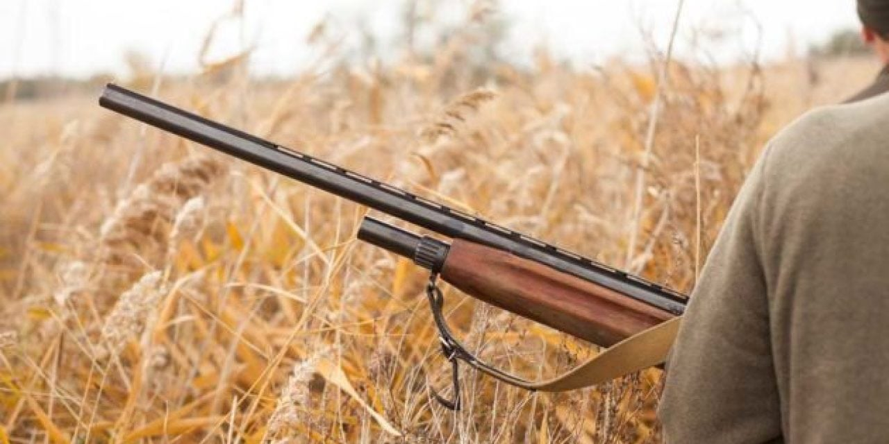 Top 5 Most Overrated Guns for Hunting