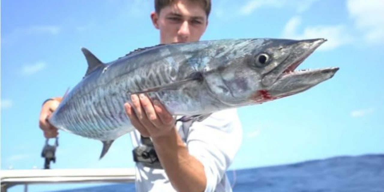 Video: Fishing for Mackeral and Golden Trevally With Jon B and Lunkers TV
