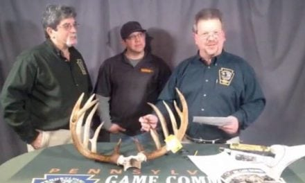 New Pennsylvania Whitetail Record Officially Announced This Month