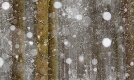 Ice And Snow Scenes Assignment Winner Henrik Spranz