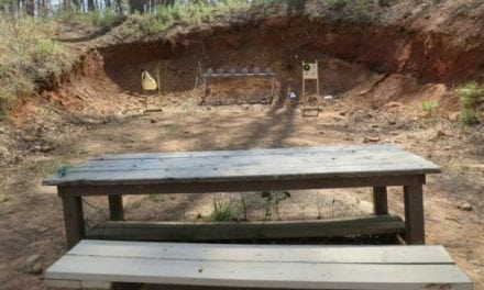 Sunday Gunday: 4 Budget-Friendly Plinking Rifles Worth Buying