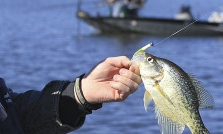 A Crappie Tip From Arkansas