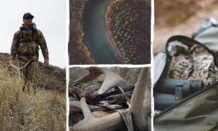 Relentless Clarity: Leupold's BX-5 Santiam HD 8×42 and 10×42 Binoculars
