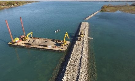 Revitalizing the Detroit River's Ecosystem