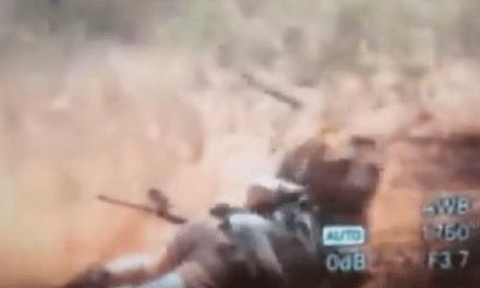 Video Captures Lion Mauling a Hunter
