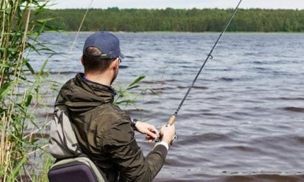 6 Topwater Fishing Tips for Summer Bass: Tactics to Learn and Master