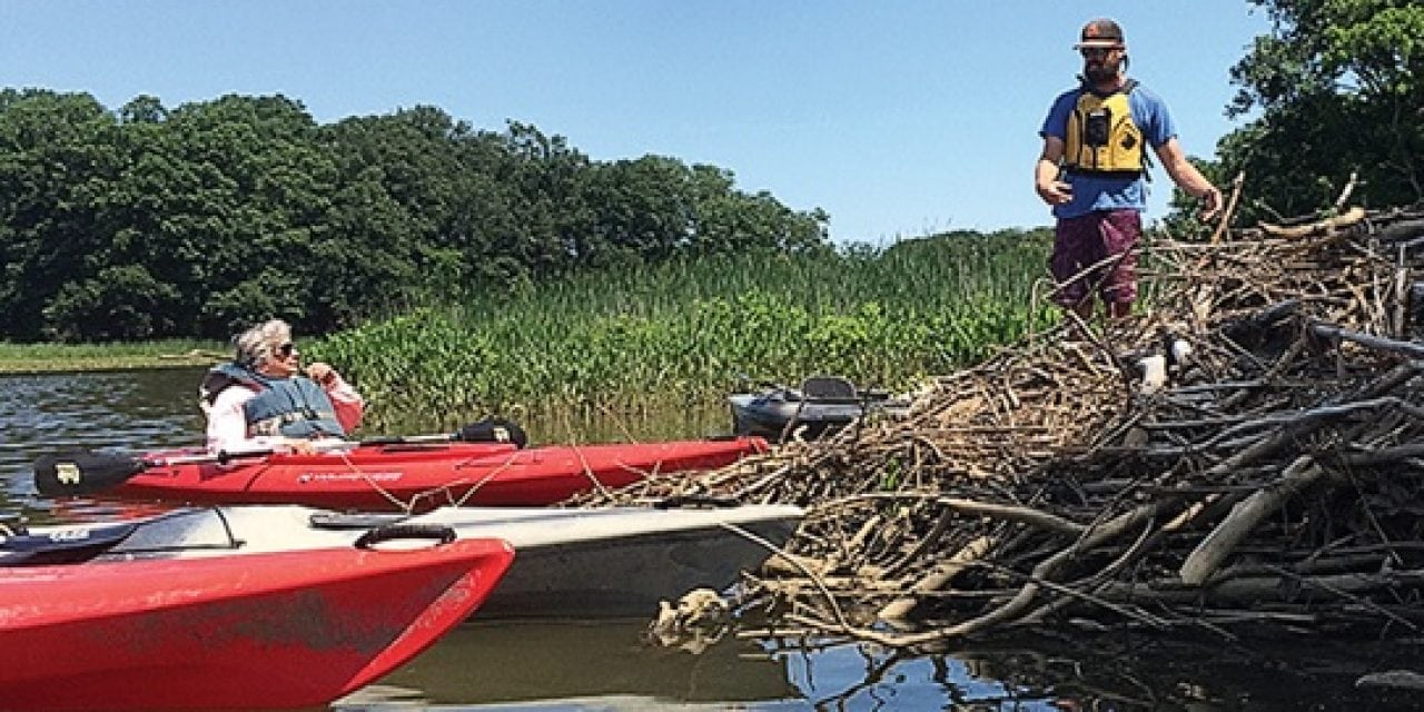 Paddling on the Sassafras River shows off the Bay that was