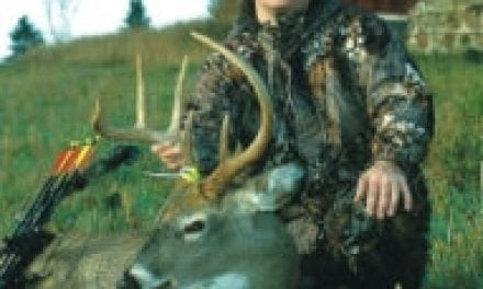 Injury Causes Contralateral Effect in Deer