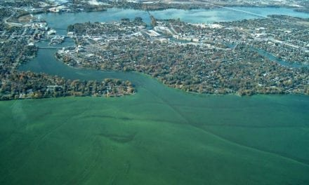 National Professional Anglers Association Testifies at Senate Hearing on Harmful Algae Blooms