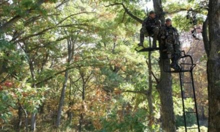Picking the Right Place to Put Your Stand This Deer Season