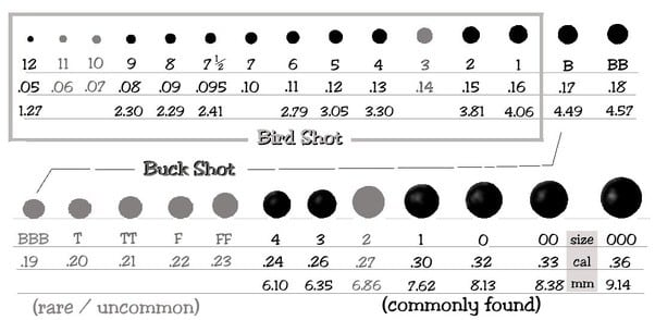 What Shotgun Load Should You Use for Each Hunt? ⋆ Outdoor ...