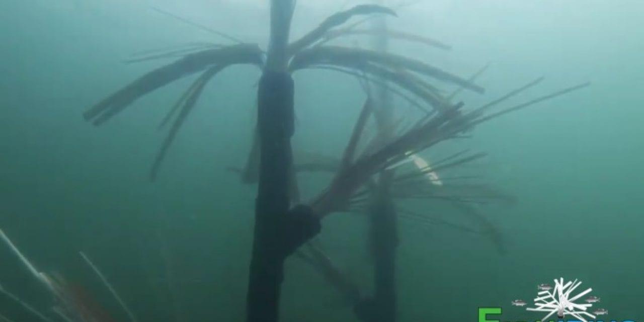 A Fishing Xanadu