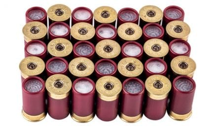 Cool Things in Small Packages: New Federal Shorty Shotshells
