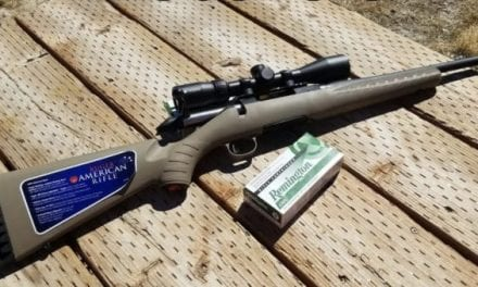 Everything You Need to Know About the Ruger American Ranch Rifle