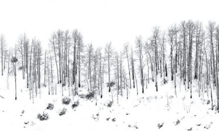 Winter Panoramas And Vertoramas Assignment Winner Wendy Gedack