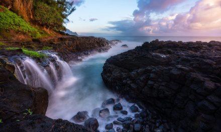 The Tropics Assignment Winner Jared Boaz