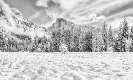 Winter Black-And-White Assignment Winner Menx Cuizon