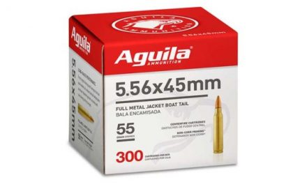 Aguila's Bulk Packs of 5.56 Ammo: Giving Shooting Sports Enthusiasts Exactly What They Need