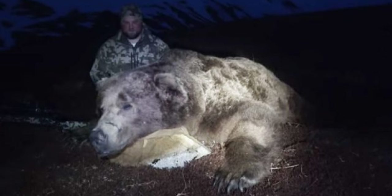 Epic Alaska Brown Bear Hunt Ends With Absolute Monster