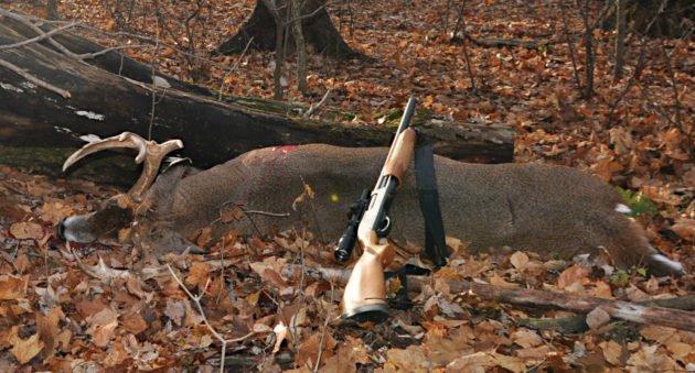 Deer Hunting with Shotguns
