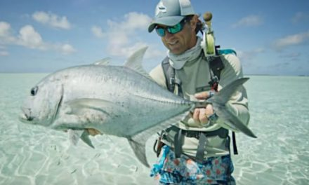 Dreaming of Some Seychelles Fishing? Here's How to Do It