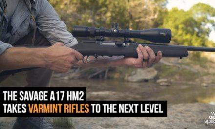 Gun Review: The Savage Arms A17 HM2 Takes Varmint Guns to the Next Level