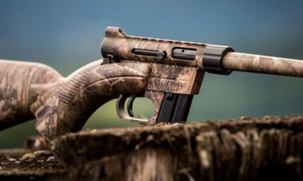 Lean the Odds in Your Favor with the Henry U.S. Survival AR-7