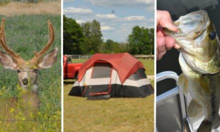 Who's Having More Fun? Hunters, Anglers, or Campers?