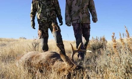 New York Lowers Legal Limit for Hunting While Intoxicated
