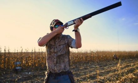Opening Ceremony: Hunting the First Day of Texas Dove Season