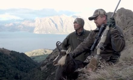Chamois Hunting in New Zealand With a 6.5 PRC
