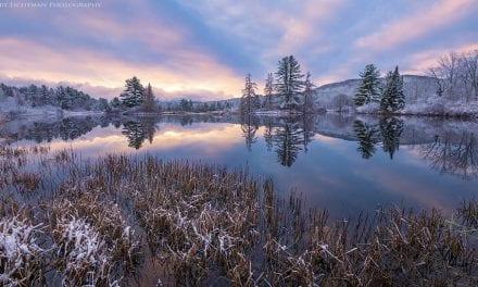 First Snowfalls Assignment Winner Harry Lichtman