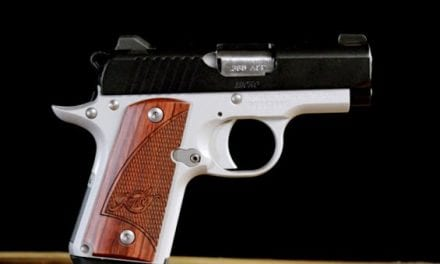10 of the Best Compact Handguns for Less Than $900