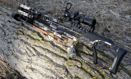 Crossbow for Spring Wild Turkey Hunting