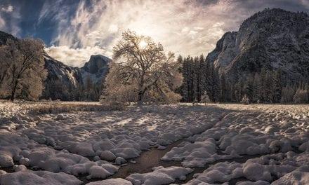 Winter Shadows Assignment Winner Kris Walkowski