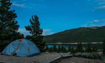 Colorado Officials Looking for Bear That Pounced On Campers in Tent