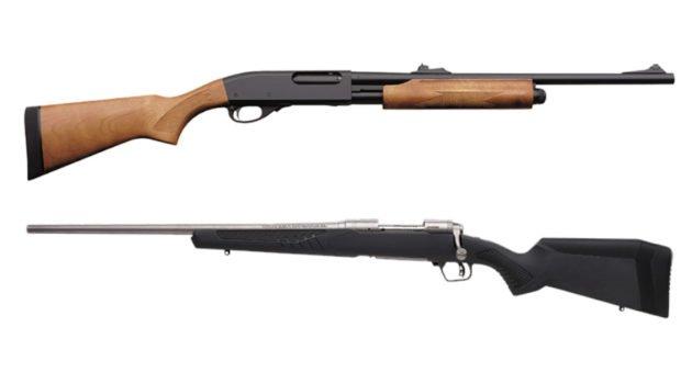 Shotgun vs Rifle for Deer