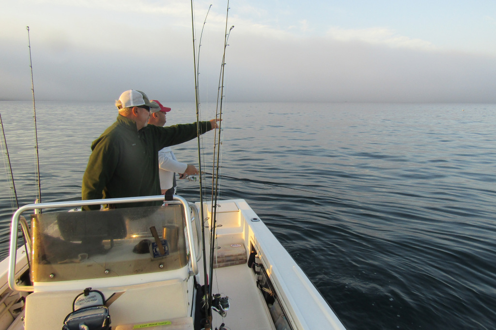 Todd Corayer : FishWrapWriter