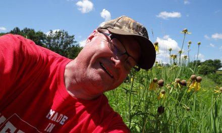 Wildflower Power: Promoting Pollinator Week