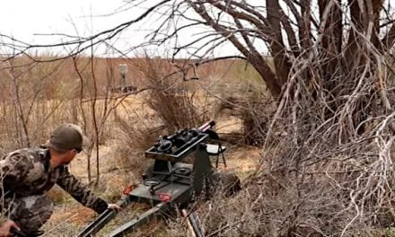 Texas Hunter Takes Out Feral Hog With 40mm Cannon and Grape Shot