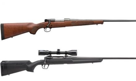 8 Great .243 Winchester Rifles for Deer, Varmints and More