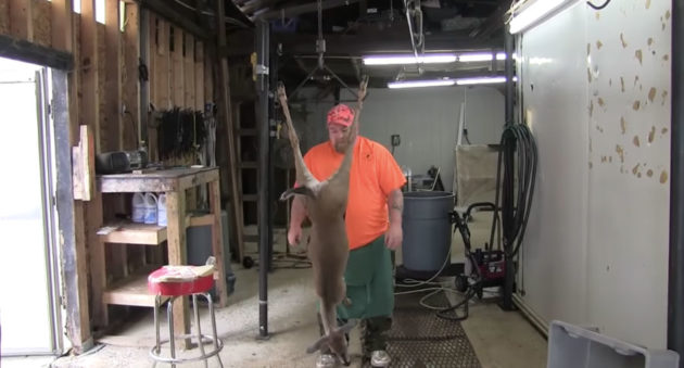 fast deer cleaning