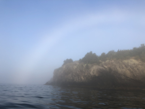 See, there's always hope, even in the fog
