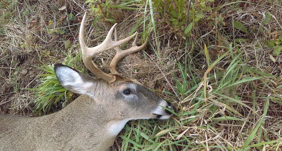 good hunting season
