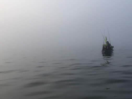 Todd Corayer Fog Shot