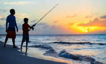 Best Saltwater Fishing Gear for Beginners of 2021: Affordable & High-Quality