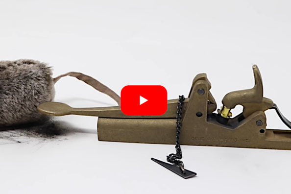 Black Powder Cannon Mouse Trap from 1862 Packs Quite the Punch